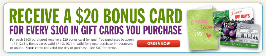 Receive a $20 Bonus Card for Every $100 in Gift Cards You Purchase