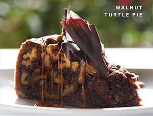 Walnut Turtle Pie